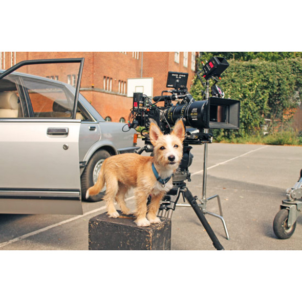 Filmtiertrainer Workshop bei Moosburg
