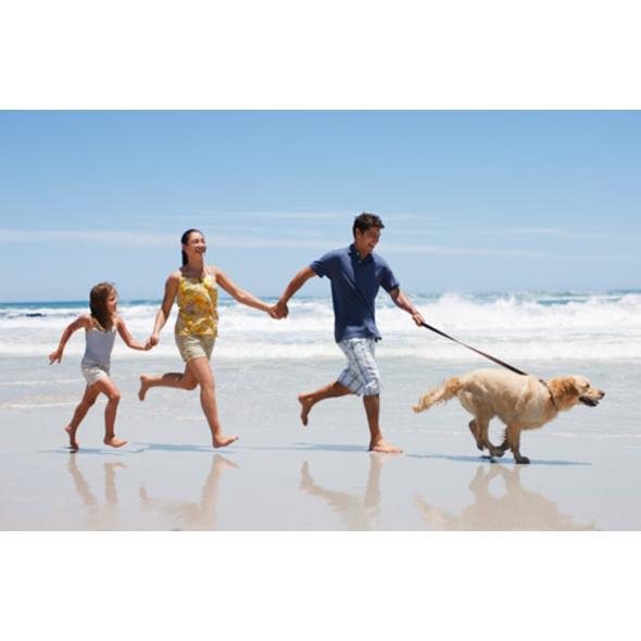 Familien-Urlaub im Bungalow mit Hund (5 Tage)