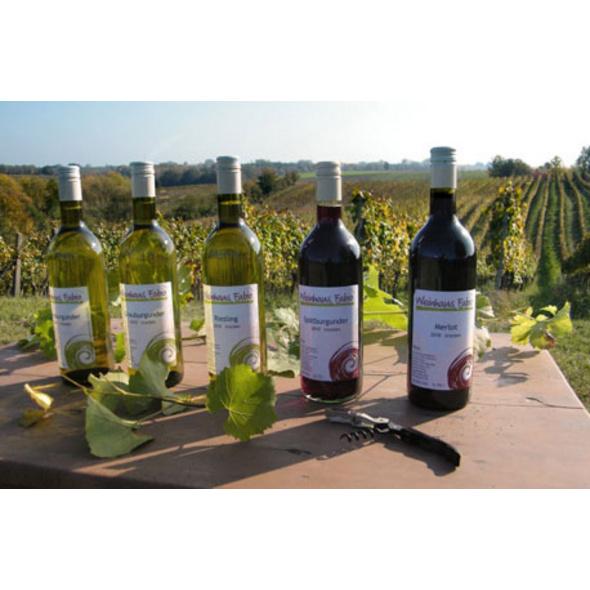 Weinbergwanderung mit Weinverkostung in Rheinland-Pfalz