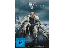 Vikings - Season 6.1  [3 DVDs]